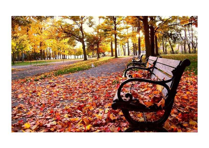 waarom-de-herfst-heerlijk-is